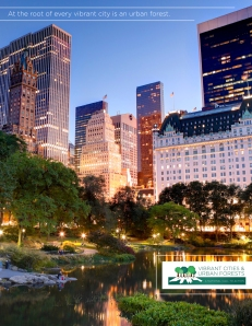Vibrant Cities & Urban Forests Report